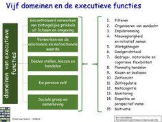 5 domeinen en Executieve functies Jolles tienerbrein EmielvDoorn