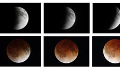 Blood moon - A combination photo shows the moon during a total lunar eclipse as seen from Mexico City April 15, 2014. Edgard Garrido/Reuters  - Revelations, 6:12-13: And I beheld when he had opened the sixth seal, and, lo, there was a great earthquake; and the sun became black as sackcloth of hair, and the moon became as blood; And the stars of heaven fell unto the earth, even as a fig tree casteth her untimely figs, when she is shaken of a mighty wind.