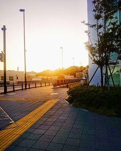 ちょっとずつ暖かくなってるような  #空 #夕焼け #夕陽 #夕日 #イマソラ #いまそら #ダレカニミセタイソラ #写真好きな人と繋がりたい #写真撮ってる人と繋がりたい #photo #japan #landscape #日本 #風景 #instagram #igers #igersjp #sun #sunshine #sunset #sunsetlovers #igで繋がる空 #sky #skylovers #skyporn #skypainters #skyscraper #photooftheday #instasky #instagood