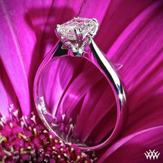 Beautiful simple solitaire setting.