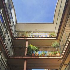 Raised garden walkways #goldenlaneestate #barbican #barbicancentre…