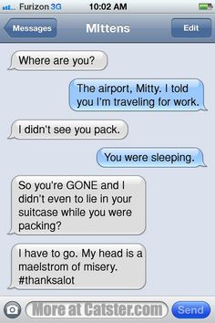 Texts From Mittens: The Abandonment Edition | Catster  Click image to read the other 7 new ones on Catster!