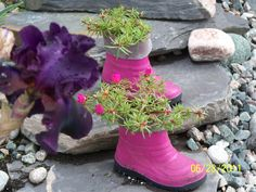 Don't throw out those little rubber boots they make cute planters.