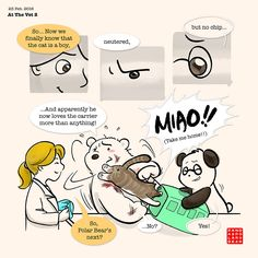 Are your vet visits like this as well? I mean... Ouch! >""