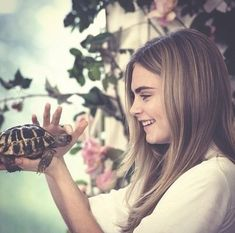 Cara Delevingne. With a tortoise. What is happening