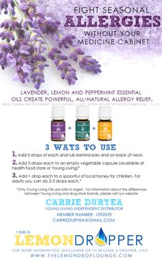 young living essential oils for allergies - lavender, lemon, peppermint. The Allergy Trio. Young Living Essential Oils for ALLERGIES! Essential Oils Allergies, Natural Essential Oils, Essential Oil Blends, Pure Essential, Young Living Oils, Young Living Essential Oils, Lemon Dropper, Natural Allergy Relief, Seasonal Allergies