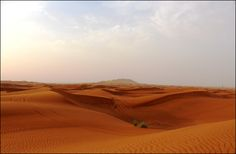 Desert Safari with Barbecue & Camp Site Activities Read more:  http://www.godubai.com/tours/TourProfile.asp?tid=7