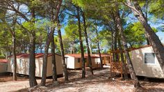 Mobile Homes, Camps, Croatia, Holidays, Plants, Camper Shells, Campsis, Vacations, Holidays Events