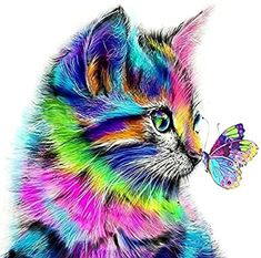 Buy Full Dimond Diamond Diy Cross Stitch Colour the Cat Butterfly Home Decoration Painting Background Wall Art Wallpaper at Wish - Shopping Made Fun Colorful Animal Paintings, Colorful Animals, Cute Animals, Oil Painting On Canvas, Canvas Art, Painting Art, Diy Canvas, Canvas Frame, Paint By Number Diy
