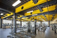 yellow fitness - Google Search
