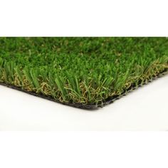 Pet/Sport 60 5 ft. x 10 ft. Artificial Synthetic Lawn Turf Grass Carpet for Outdoor Landscape