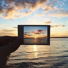 polaroid within a polaroid