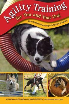 10 Best Dog Products for Solving Behavior Problems - Top Dog Tips