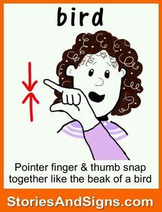 Bird in Sign Langauge