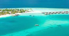 Constance Halaveli Resort - a luxury resort escape #bmrtg #Maldives #constancehalaveli #destinationearth #indianocean #bestvacations #WorldTravelGuide #LalumiTravels #warrenjc #livetravelchannel #sunnysideoflife #maldivity #travel #traveling #vacation #dive #surfing #adventureculture #instagood #holiday #lagoon #beach #instapassport #instatraveling #mytravelgram #travelgram #igtravel #CrystalClearWater #LonelyPlant #adventureculturenature