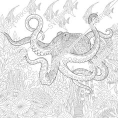 Coloring pages for adults. Sea Octopus. Adult coloring pages. | Etsy Octopus Coloring Page, Animal Coloring Pages, Coloring Book Pages, Printable Coloring Pages, Coloring Pages For Kids, Coloring Sheets, Ocean Coloring Pages, Paisley Doodle, Anti Stress Coloring Book