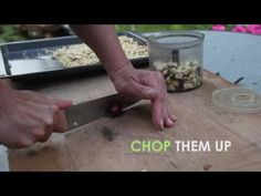 LAUNDRY DETERGENT MADE OF HORSE CHESTNUTS 2 WAYS - YouTube