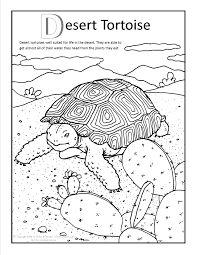 Color the Desert Landscape   School Related   Pinterest ...