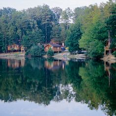 Who wants to camp with us at Forest Lake?