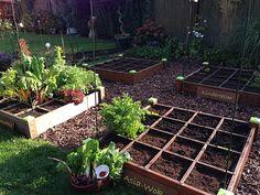 Fotogalerie der Gartensaison 2015