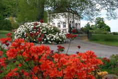 Glendoick House & Rhododendrons