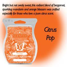 Citrus Pop (New Release)