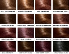 Brown Hair Color Chart-Chocolate brown!!
