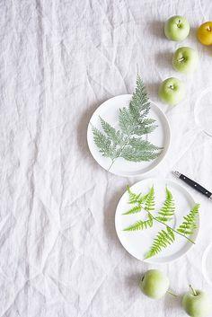 涼やかに真夏のおもてなしシダ植物を使ったグリーンコースター