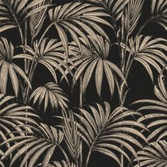 Black Gold Bedroom Honolulu Black and Gold Wallpaper, , large - Palm Leaf Wallpaper, Tropical Wallpaper, Glitter Wallpaper, Modern Wallpaper, Wallpaper Samples, Vinyl Wallpaper, Textured Wallpaper, Black Wallpaper, Designer Wallpaper