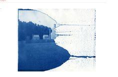 Amazing Cyanotype made by Annie Hogan