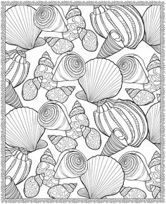Welcome to Dover Publications Sea Shells Adult Coloring Pages, Printable Coloring Pages, Free Coloring, Coloring Sheets, Coloring Books, Colouring, Ocean Coloring Pages, Coloring Pages For Grown Ups, Dover Publications
