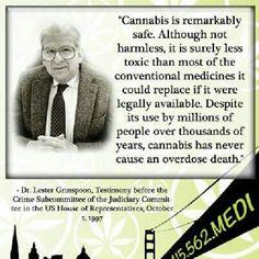 A Haravard Big wig speaks on cannabis circa 1997