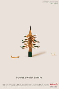 the-forest-can-grow-by-the-tip-of-your-pencil