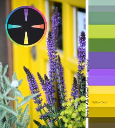 This bright yellow door caught my eye and is especially lovely paired with spikes of purple salvia. Just as this scene has lots of colorful interest, depth can be added to any complementary color scheme by adding shadows and highlights of each color, and expanding with a second set of complementary colors to make a Tetrad. Color wheels from Eye For Color: https://www.etsy.com/listing/164849693/color-wheel-color-inspiration-work-with?ref=shop_home_active_24