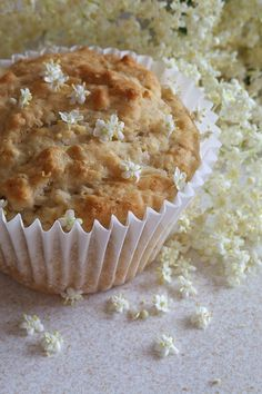 Elderflower muffins recipe; edible flowers Bacon Zucchini Quiche, Hot Milk Cake, Wild Edibles, Eatable Flowers, Flower Food, Cupcake Flavors, Incredible Edibles, Kraut, Elderflower