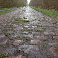 The Arenberg, Paris-Roubaix.