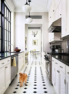 (CS: the break up of the design pattern in the floor tile makes this work!) GALLEY STYLE + LINKS...