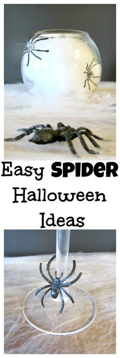 Easy spider Hallowee