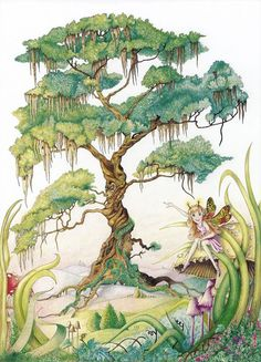 The tree in this pic is so beautiful. It reminds me of a life-size bonsai tree. Palm Tree Drawing, Pine Tree Tattoo, Tree Stencil, Magical Tree, Garden Drawing, Fairy Tree, Tree Illustration, Illustrations, Black And White Drawing