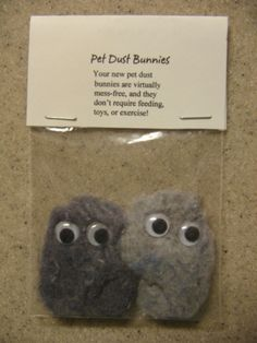 Pet Dust Bunnies