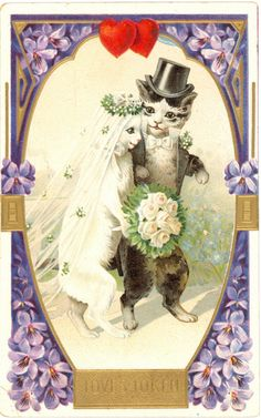 vintage wedded cats