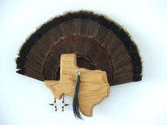 Wild Turkey Tail Fan Display/Mount - Red Oak - State of Texas Pig Hunting, Trophy Hunting, Turkey Hunting, Turkey Fan, Wild Turkey, Turkey Mounts, Taxidermy Display, Red Oak, Texas