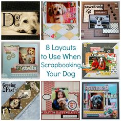 8 Layouts to Use When Scrapbooking Your Dog – Scrap Booking Dog Scrapbook Layouts, Love Scrapbook, Scrapbook Templates, Scrapbook Cards, Scrapbooking Ideas, Digital Scrapbooking, Dog Corner, Upcycled Crafts, Diy Crafts