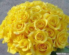 Flores amarela