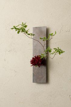 Arte Floral, Deco Floral, Floral Design, Ikebana Flower Arrangement, Ikebana Arrangements, Flower Arrangements Simple, Cactus Flower, Flower Vases, Flower Art