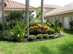 landscaping ideas for front yard florida palm tree landscaping ideas - Florida Landscape Design Ideas