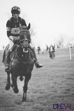 Perfection.  Andrew Nicholson and Quimbo cross country Rolex Three Day Event 2013