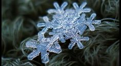 Snowflakes Like You've Never Seen (PHOTOS) - weather.com