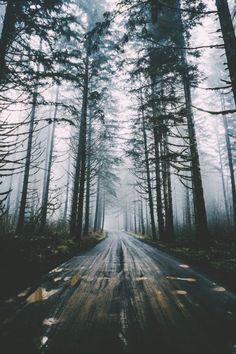 Find images and videos about photography, nature and travel on We Heart It - the app to get lost in what you love. Beautiful World, Beautiful Places, Beautiful Pictures, Adventure Is Out There, Nature Photos, The Great Outdoors, Wonders Of The World, Nature Photography, Scenery