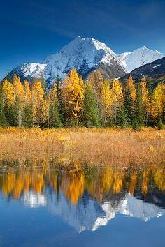 Alaska in the Fall.